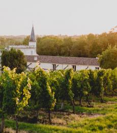 Bordeaux cabernet sauvignon
